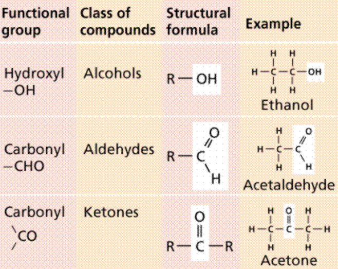 Functional groups in organic molecules