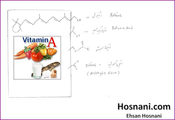Vitamin A has three active forms (retinal, retinol and retinoic acid) and a storage form (retinyl ester)