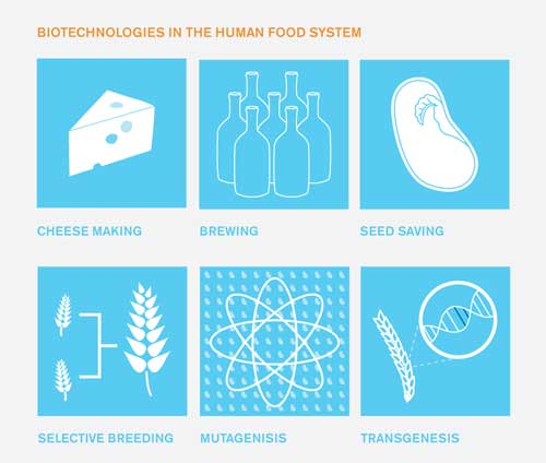 biotechnology food