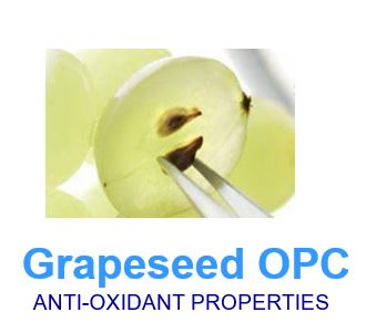 grapeseed OPC