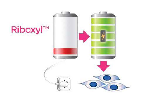 riboxyl battery