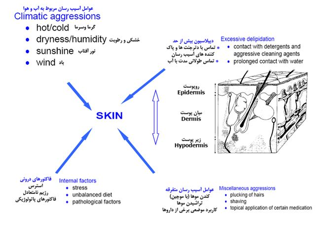 skin aggressions