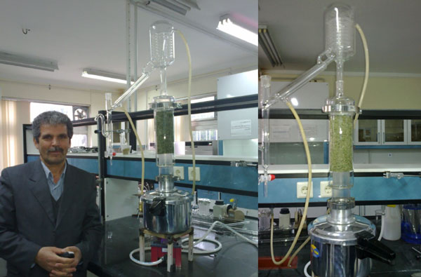steam distillation pilot