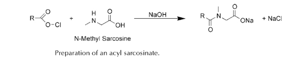 surfactants sarcosinates og