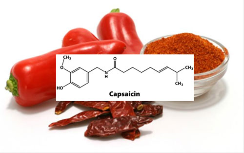 vocabulary capsaicin og